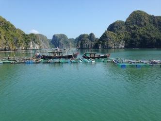 Vietnam_HalongBay_FloatingVillage