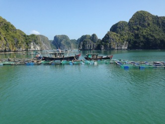 Vietnam_HalongBay_FloatingVillage