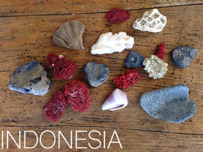 Indonesia copy