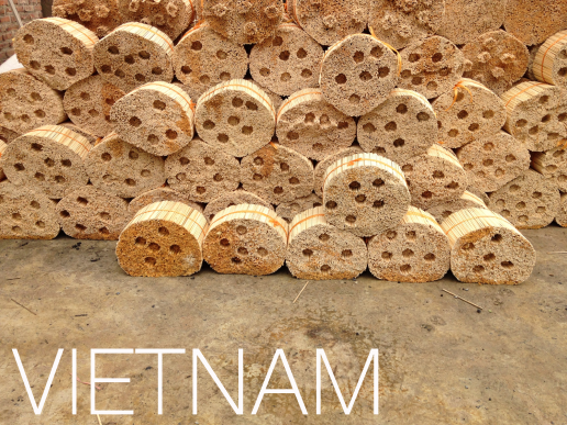Vietnam copy